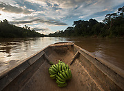 Plantain, the staple food, in a dug-out canoe.