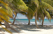 Tropical island at Laughing Bird Cay, Carribean Sea, Placencia, Belize