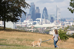 © Licensed to London News Pictures. 22/09/2016. The first official day of Autumn got off to a sunny start in Greenwich Park, south east London. Credit : Rob Powell/LNP