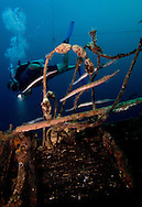 diver in Bonaire swims with trumpet fish on wreck