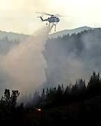 Greeley Hill, California-- July 30, 2008-Telegraph Fire-Wildfires Threaten Yosemite National Park. Carson Sikorsky S-61 Helicopter drops water on the leading edge of Telegraph fire.  Division L is on the leading edge of the fire and is threatening Greeley Hill..Photo by Al GOLUB/Golub Photography