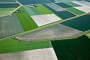 Nederland, Zeeland, Zuid-Beveland, 12-06-2009; Egbert-Petruspolder, geometrische verkaveling van akker met gewassen. De lijnen op de dijk bestaan uit muraltmuurtjes..Deze muurtjes, naar een idee van ir. R.R.L. de Muralt, bestaan uit prefabricated betonen elementen en zijn in de jaren tussen 1906 en 1935 op de dijken in Zeeland geplaatst. Een alternatieve dijkverhoging, waarvoor je het dijklichaam niet hoefde te verbreden. Na de Ramp van 1953 zijn de muurtjes vrijwel overal opgeruimd, op deze dijk bij het Veerse Meer, geen primaire waterkering, zijn de muurtje echter blijven staan..Swart collectie, luchtfoto (25 procent toeslag); Swart Collection, aerial photo (additional fee required).foto Siebe Swart / photo Siebe Swart
