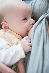 Baby boy breast feeding, close-up