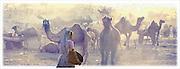 Fairground, Pushkar