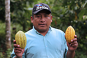 Pablo Bol, Mopan Mayan cacao grower from San Jose, Toledo, holds recently harvested cacao pods. Mr. Bol serves as the TCGA's San Jose extension officer, offering technical support to local TCGA members. Toledo Cacao Growers' Association (TCGA), San Jose, Toledo, Belize. January 25, 2013.