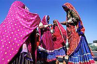 Inde, Rajasthan, Region de Ghanerao, Femme Rajpute // India, Rajasthan, Ghanerao area, Rajpute woman