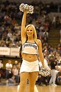 November 23, 2004, Minneapolis, Minnesota, USA;  The Timberwolves Dancers perform during a timeout of the Seattle SuperSonics at Minnesota Timberwolves game.