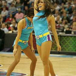 19 November 2008:  New Orleans Honeybee dancers perform during a NBA game between the Sacramento Kings and the New Orleans Hornets at at the New Orleans Arena in New Orleans, LA..