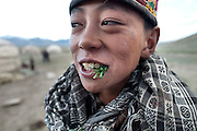 Young boy eating raw wild onion, the only vegetable in the Pamir. Daily life at the Khan (chief) summer camp of Kara Jylga...Trekking through the high altitude plateau of the Little Pamir mountains (average 4200 meters) , where the Afghan Kyrgyz community live all year, on the borders of China, Tajikistan and Pakistan.