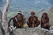 Dani tribe <br /> Budaya village<br /> Suroba<br /> Trikora Mountains<br /> West Papua<br /> Indonesia
