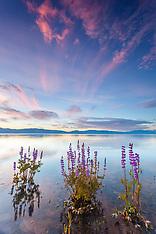 Lake Tahoe Sunrises Gallery