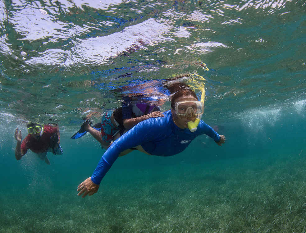 Rachel Graham<br /> Executive Director at Mar Alliance<br /> Hol Chan Marine Reserve, Ambergris Caye<br /> Belize<br /> Central America
