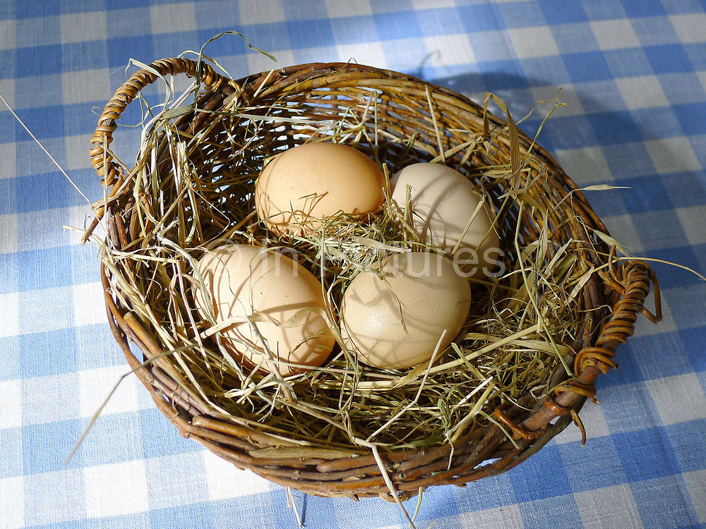 A basket of Deborah Devonshire's hens eggs in a basket on the kitchen table at her home on Chatsworth Estate.