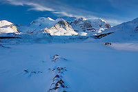 Mount Athabasca and Mount Andromeda in winter seen from the glacial plain of the SunwaptaRiver, Jasper National Park Alberta Canada