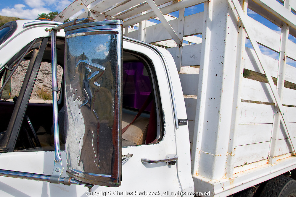 Chrome naked lady truck mirror on cattle truck, Sonora Mexico