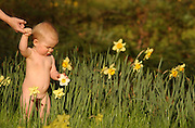 Child and flowers. (model release)