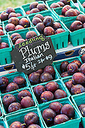 Fresh Italian plums on sale at a farmers market in Wicker Park August 2, 2015 in Chicago, Illinois, USA