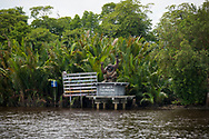 """Central Kalimantan, Indonesia - March 5, 2017: A sign with an orangutan statue on top reads, """"Welcome to Tanjung Puting National Park"""". The park, located in Indonesia's Central Kalimantan province and accessed by boat, is a popular destination to see orangutans in the wild."""