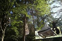 31.08.2017 Puszcza Bialowieska Kilkunastu aktywistow organizacji ekologicznych od wtorkowego poranka probuje uniemozliwic wywozenie drewna z Puszczy Bialowieskiej . Kolejna noc spedzili na przypietych do drzew platformach . W protescie biora udzial takze aktywisci z 12 krajow N/z aktywisci przypieci do drzewa fot Michal Kosc / AGENCJA WSCHOD