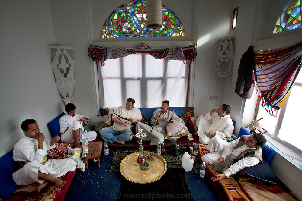 A traditional Thursday afternoon qat-chewing and tobacco-smoking session among friends in Sanaa, Yemen, can last five or six hours. (From the book What I Eat: Around the World in 80 Diets.) The men pick through the bag selecting leaves to chew until the masticated mass in their cheek is the size of a golf ball. Qat is harvested year-round.  Its leaves lose their potency within a day, so they must be picked, sorted, washed, and rushed to market daily.