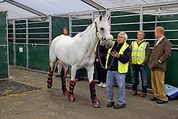 Nooney Blue of Lara de Liedekerke with Vic Donckers <br /> Departure from Liege airport of the horses for the WEG in Lexington - Kentucky<br /> Alltech FEI World Equestrian Games - Kentucky 2010<br /> © Dirk Caremans
