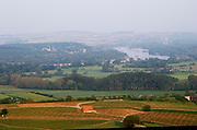 Vineyards, view of landscape from town. Sancerre village, Loire, France