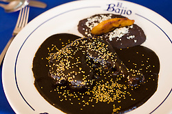 A plate of traditional mole at El Bajio, a well known restaurant in Mexico City for traditional mexican cuisine.