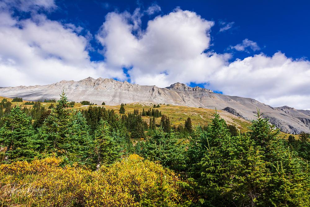 Nigel Peak from Wilcox Ridge, Columbia Icefields, Jasper National Park, Alberta, Canada