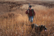 Double barreled shotgun over his shoulder, hunter Byron Grubb walks Annie the black labrador dog of a fellow hunting partner, back onto a prairie trail after shooting upland game birds such as pheasant or grouse in a dry slough full of undergrowth near Minot, North Dakota, United States. Byron has been shooting for most of his life and puts considerable efforts into his hunting, efforts which reward him with wild game meats, none of which is wasted.