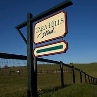 Tara Hills Stud 2010