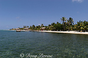 Northeast Caye, Glover's Reef Atoll, Belize, Central America