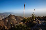 Landscape from the Cerro Quemado.