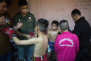 Jan 24, 2014 - Chiang Mai, Thailand - <br /> <br /> Nine Year Old Muay Thai Fighter<br /> <br /> Focus checks out his competition as they are both fitted with gloves before their fight at the Thapae Muay Thai Stadium in Chiang Mai. PETCHFOGUS SITTHAHARNAEK, 9, aka Focus is the top fighter for his age and weight in Chiang Mai. He has begun fighting older, heavier opponents to continue to improve his skills. Fighters are typically paid 1000 baht (0) per fight.  <br /> ©Exclusivepix