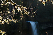 USA, Oregon, Silver Falls State Park, South Falls