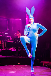 Edinburgh, Scotland, United Kingdom. 21November, 2017. Cabaret group Le Clique present their Christmas show Le Clique Noel at the Spiegeltent in Edinburgh as part of the city's annual Christmas festivities. Scott Grabell, aka Scotty the Blue Bunny performs.