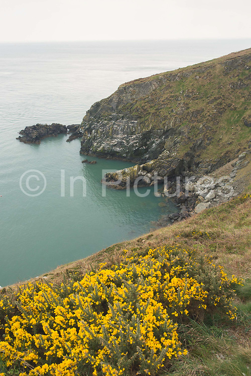 Views from Howth cliff path overlooking Dublin Bay on 09th April 2017 in County Dublin, Republic of Ireland. Howarth Cliff Path, at Howth Head, is a peninsula just 15km northeast of Dublin City.