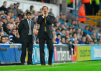 Photo: Leigh Quinnell/Sportsbeat Images.<br /> Queens Park Rangers v Hull City. Coca Cola Championship. 03/11/2007. Hull manager Phil Brown shouts out, watched by QPRs new manager Luigi De Canio.