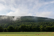 Town of Cornwall, New York - A view of Schunnemunk Mountain and Clove Brook farm on July 24, 2019.