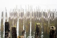 Remains of a burned pier, Portland, Maine.