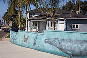 Wall Mural in a Residential Neighborhood of San Clemente California