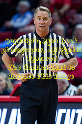 NORMAL, IL - February 07:  Referee Doug Knight during a college women's basketball game between the ISU Redbirds and the Braves of Bradley University February 07 2020 at Redbird Arena in Normal, IL. (Photo by Alan Look)