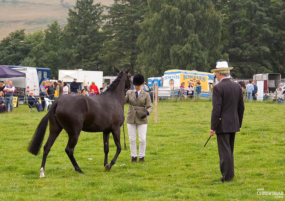 Moniaive Horse Show, a well attended old fashioned horse show held on the last Sunday of July in the beautiful rural village setting of Moniaive in Dumfries & Galloway, Scotland.