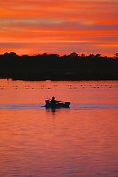 Kayaking On Kings Bay Twilight, Crystal River