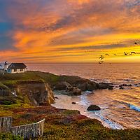 Pelicans fly past Point Montara Lighthouse near Half Moon Bay, California.