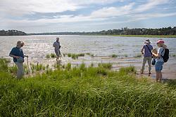 Judith, Bob,  Mary & Diane On Horseshoe Crab Survey