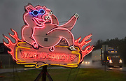 On route 231 a neon pig advertising the World Famous BBQ barbecue House, to passing traffic on 5th March 2020 in Troy, Alabama, United States of America. Alabama barbecue is generally fueled by hickory wood, but oak and pecan are also used. Across Alabama, smoked pork—chipped, chopped, and sliced—is piled on hamburger buns and often topped with coleslaw, with dill pickles added as a defining condiment.
