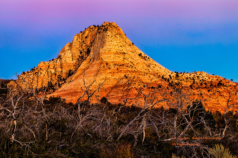 Desolate Beauty: Out on the Kolob Reservoir Road the evenings light accentuates the natural harsh nature and the beauty of the land; where the orange of the land sings out against a purple sky, near Virgin Utah, United States of America.