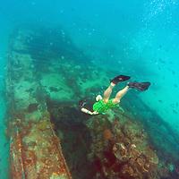 Caribbean, Barbados, Carlisle Bay. Shipwrek intentionally sunk in Carlisle Bay to form artificial reef.