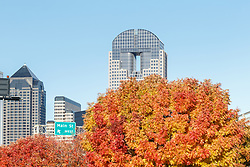 Fall color and downtown buildings, Dallas, Texas, USA