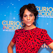 NLD/Amsterdam/20170921 - The Curious Incident - of the dog in the night-time, Chloe Leenheer